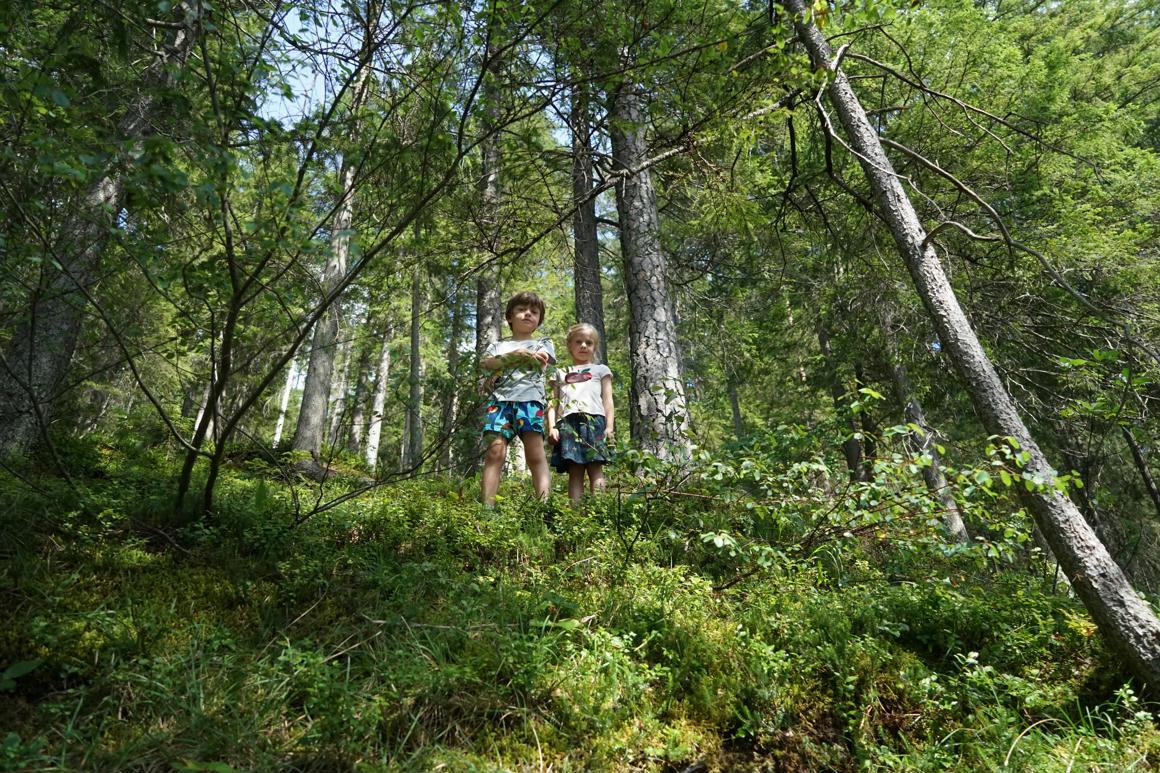 természet találkozik a gyermekek)