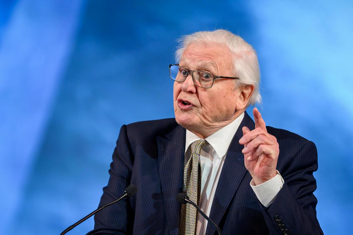 David Attenborough figyelmeztette a világ gazdasági elitjét: Az Édenkert nincs többé