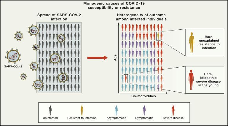5 életbe vágó kérdés a koronavírusról, amikre még mindig nem tudjuk a választ