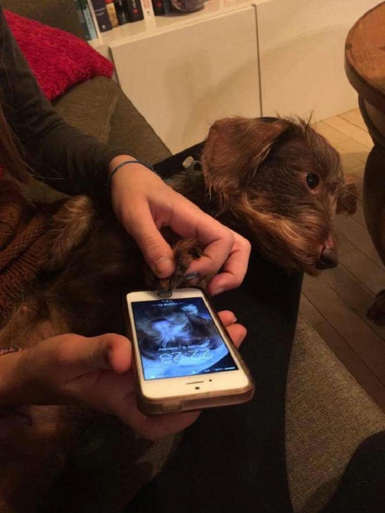 100 ingyenes társkereső oldal az iphone-hoz
