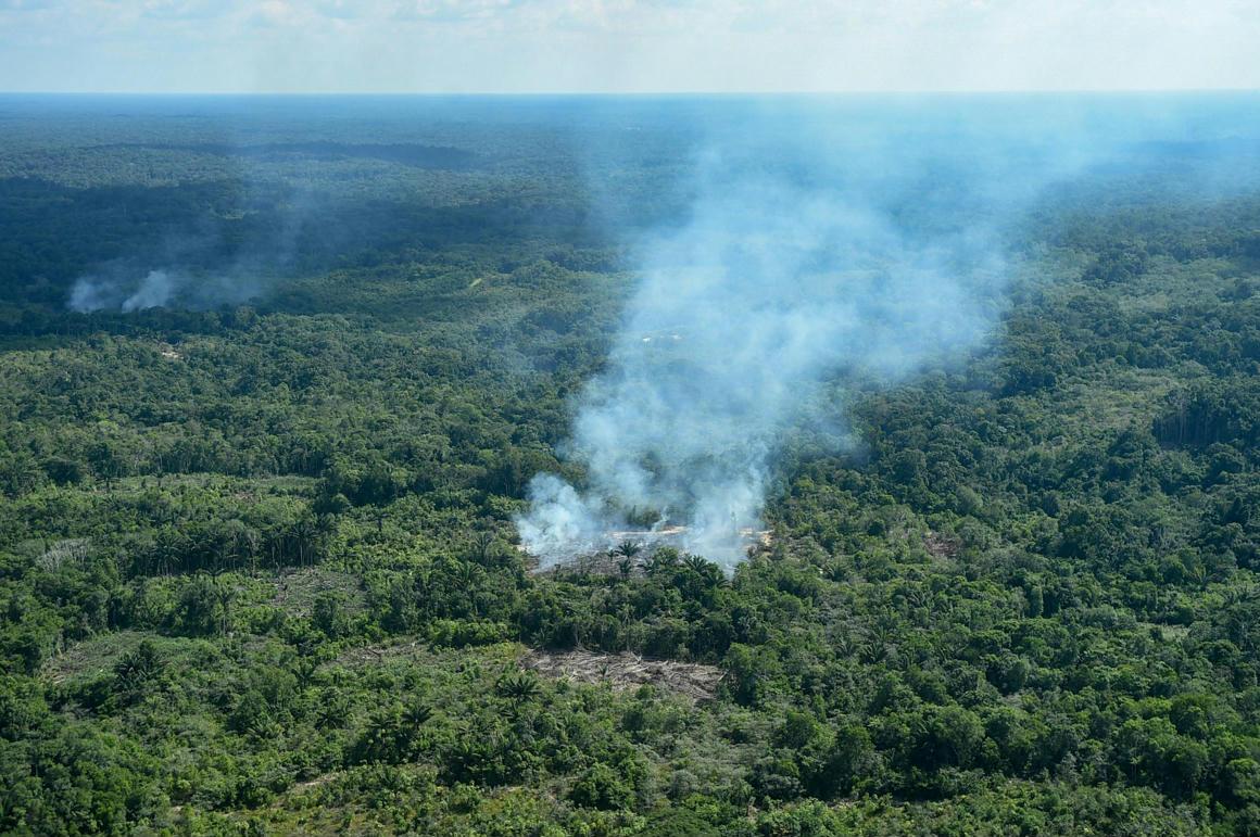 7LVd6m751bLZayObs Macron  bejelentette: Az amazonasi erdőtűz világválság
