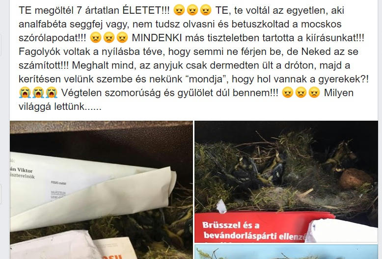 Fideszes szórólapokkal öltek meg 7 madárfiókát