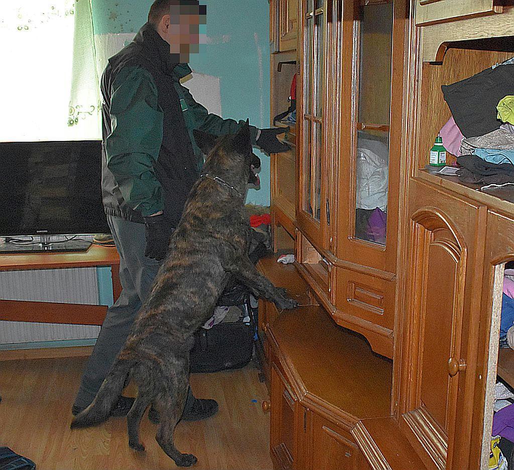 6c07161f27 Kábítószer-kereskedőket fogott a TEK - 444